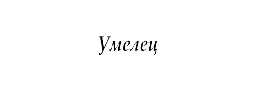 Умелец в Калининграде