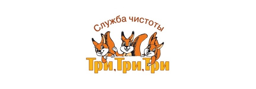 Чистка мебели на дому: служба чистоты «Три, три, три» в Калининграде. Избавиться от пятен на обивке, вычистить мебель на дому в Калининграде